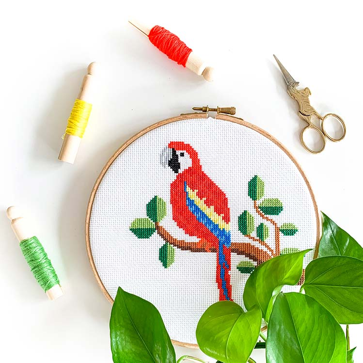 Parrot cross stitch kit