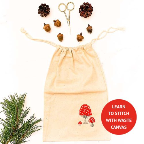 project bag cross stitch kit learn to stitch with waste canvas