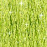DMC Etoile Mouline Embroidery Floss, per skein of 8m - C907