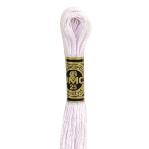 DMC 24 - Embroidery Floss Skein 8m