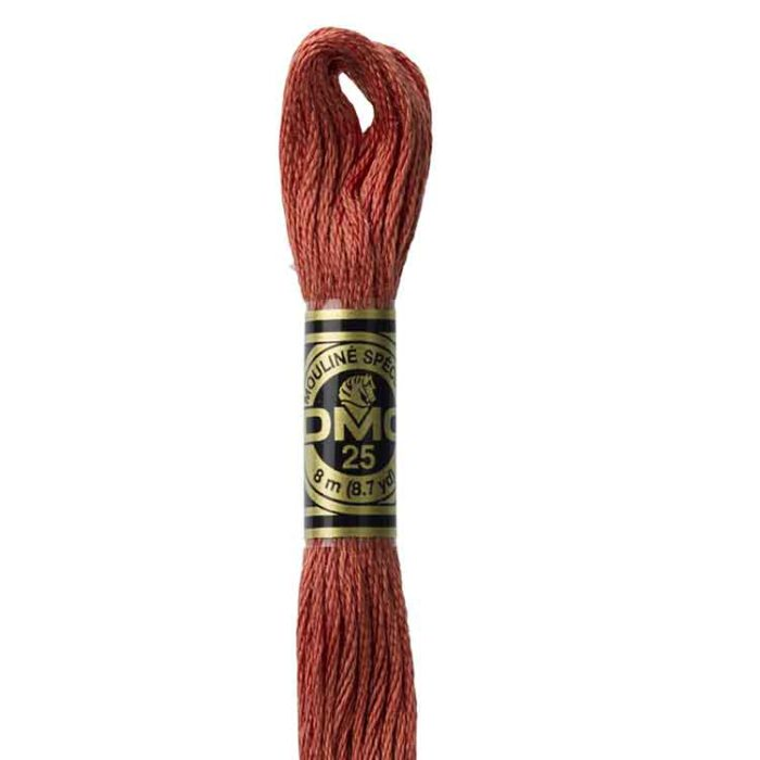 DMC 3830 - Embroidery Floss Skein 8m
