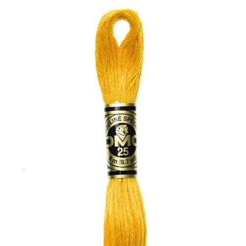 DMC 972 - Embroidery Floss Skein 8m